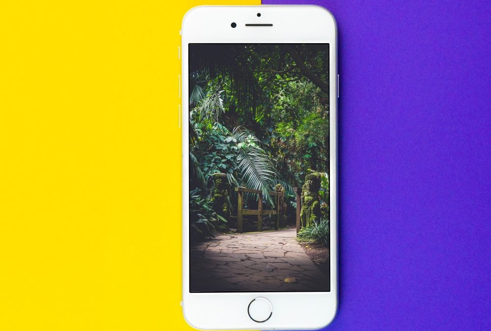 Gør det selv: Skift en Iphone 8 skærm